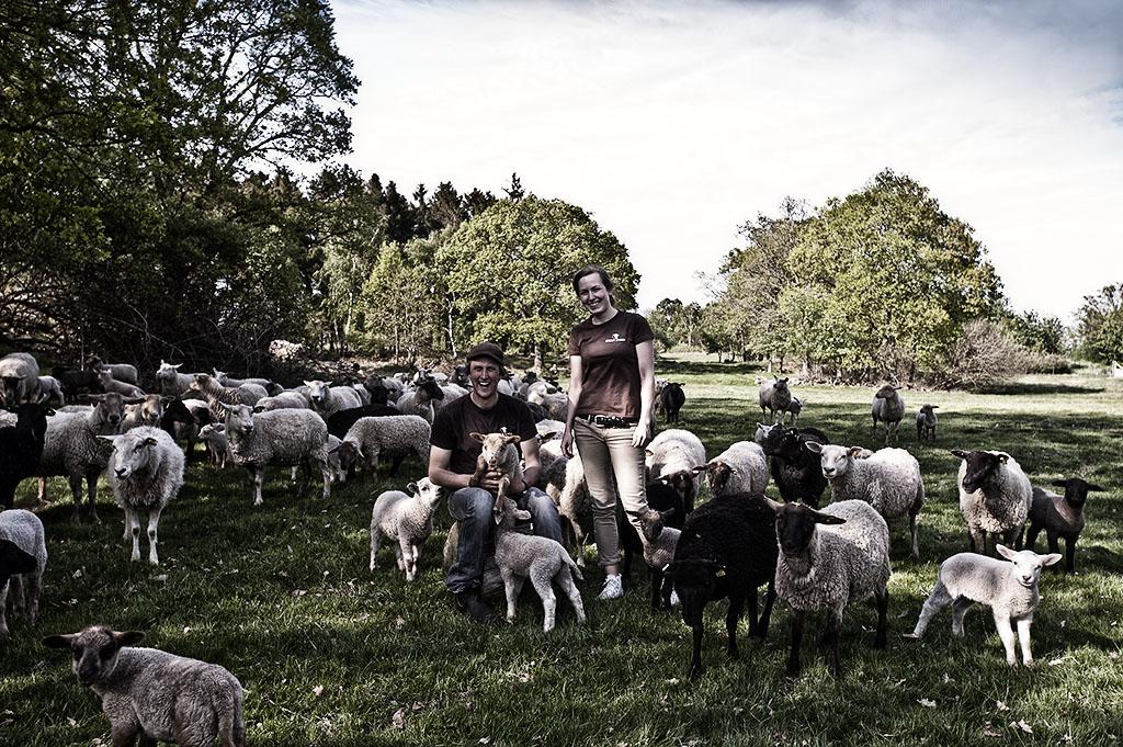 himlamycketsverige tipsar om Kulla Lamm i Jonstorp