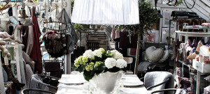 Inredningsbutik i vacker växthusmiljö